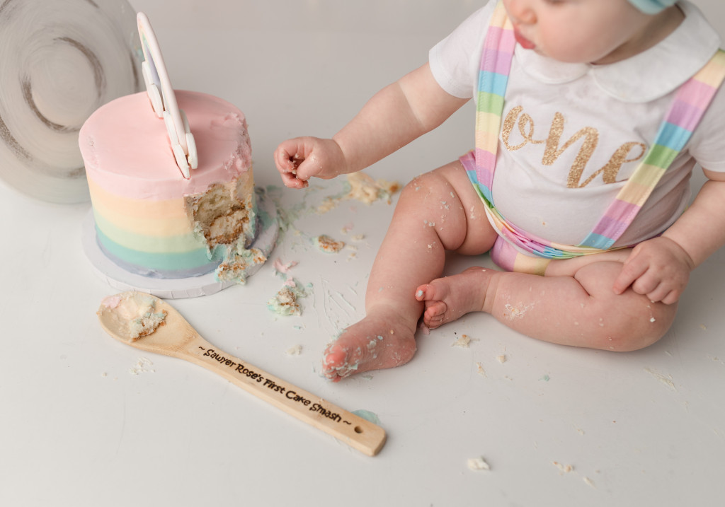 cake smash photo springfield illinois