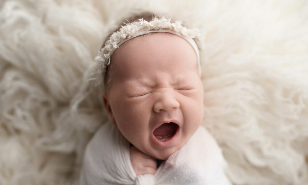 Newborn photography decatur, il
